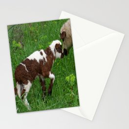 Cute Brown and White Lamb with Ewe  Stationery Cards