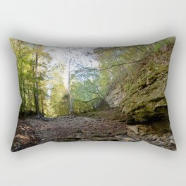 Hiking Deep in the Backwoods of the Buffalo River Headwaters, No. 4 Rectangular Pillow
