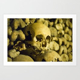 Wall of Bones Art Print