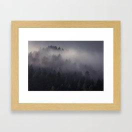 Eagle Mist Framed Art Print