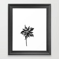 Starflower Framed Art Print
