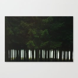 woods Canvas Print
