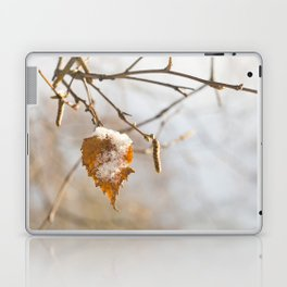 Winter wonders Laptop & iPad Skin