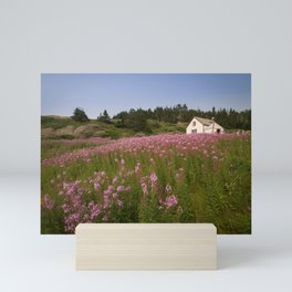 Small house on Bonaventure Island. Gaspésie, Québec, Canada. Mini Art Print
