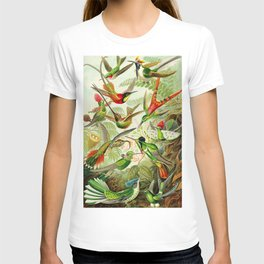 Kunstformen der Natur (Art Forms in Nature)a book of lithographic and halftones. Hummingbirds T-shirt