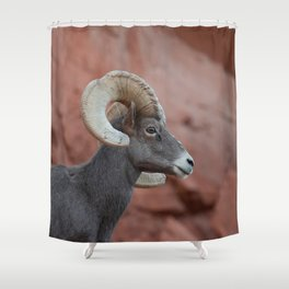 Desert Bighorn, Valley Of Fire   II Shower Curtain