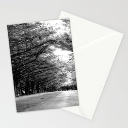 The Black & White Forest Stationery Cards