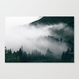Forest Fog XVIII Canvas Print