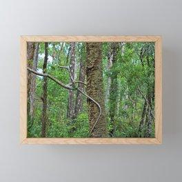 Tree Climber Framed Mini Art Print