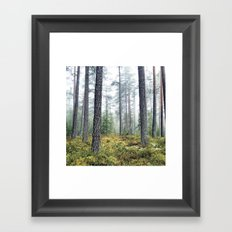ARLO Framed Art Print