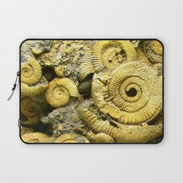 Fossils - Ammonite - Coiled Cephalopods  Laptop Sleeve