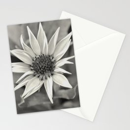 Flora Series - a lovely afternoon - Stationery Cards