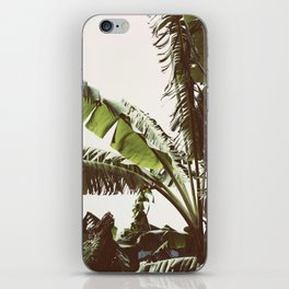 Tropical Winds iPhone Skin