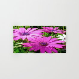 Purple And Pink Tropical Daisy Flower Hand & Bath Towel