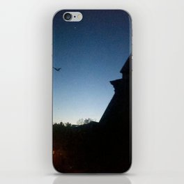 Cold Spring iPhone Skin
