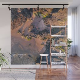 Tide and Time Wall Mural