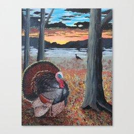 Turkey Strut at Sundown Canvas Print