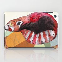 panda iPad Cases featuring Red Panda by Sandra Dieckmann