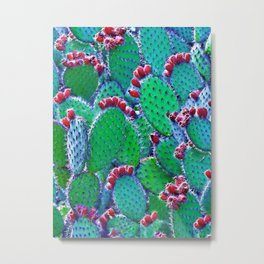 Flowering cacti Metal Print