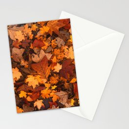 Autumn Fall Leaves Stationery Cards