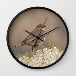 Rock Pipit Wall Clock