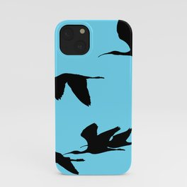 Silhouette of Glossy Ibises In Flight iPhone Case