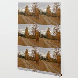 Approach Wallpaper