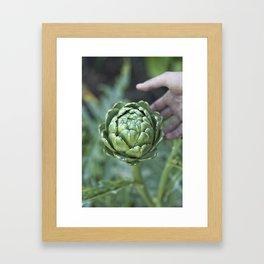 Food Jewels ARTICHOKE Framed Art Print