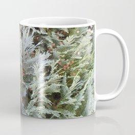Thuja tree Coffee Mug