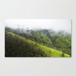 Valle de la Cocora Canvas Print