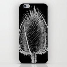 Black & White Teasel iPhone & iPod Skin