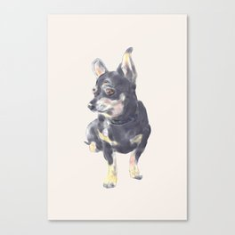 Little Dog Waiting Canvas Print