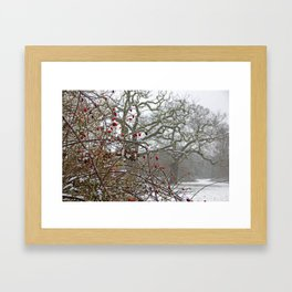 Winter berries and snow Framed Art Print