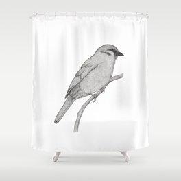 A Bird named Johan Shower Curtain