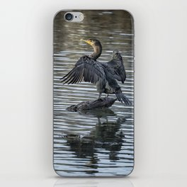 Double-Crested Cormorant Landscape iPhone Skin