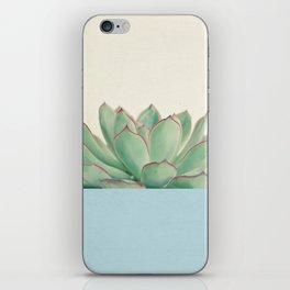 Succulent Dip III iPhone Skin