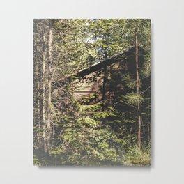 shrouded in nature Metal Print