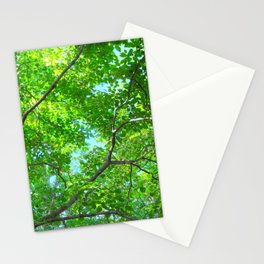 Canopy of Green, Leafy Branches with Blue Sky Stationery Cards