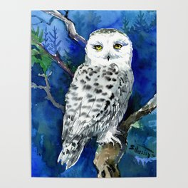 Snowy Owl, Northern Owl, White Owl, Owl art Winter woodland Poster