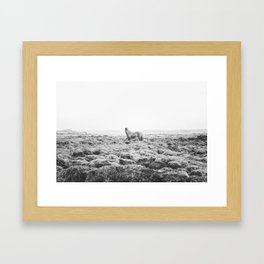 Horse Print with a Modern Style Framed Art Print