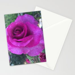 Purple Glory Stationery Cards
