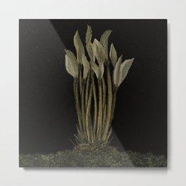 Flora#15 Metal Print