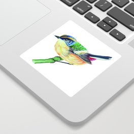 """Chilean Bird """"Siete Colores"""" Sticker"""