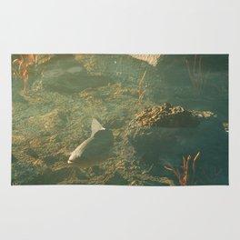 Day 0684 /// Fishy fish fishfish Rug
