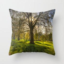 St James Park London Throw Pillow