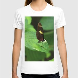 Doris Longwing T-shirt