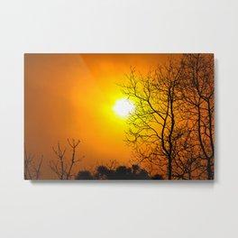 Fiery Sun Metal Print
