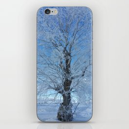Frozen tree iPhone Skin