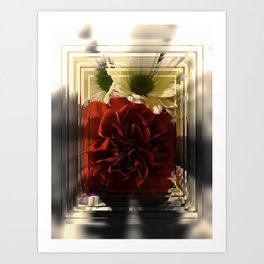 Carnation And Daisies In Glass Display Art Print