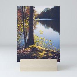 Solitude Lake Mini Art Print